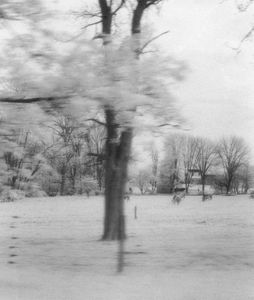 Blurred Landscape (from a moving car - infrared), Virginia