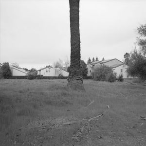 Butcher's Corner, (soon to be demolished) Last Family Orchard In Sunnyvale, California