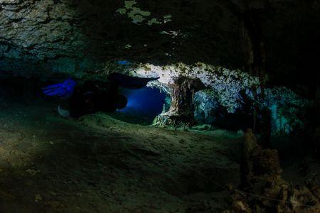 25 septembre 2015_ Cenote Mino Tauro_MG_3176.jpg