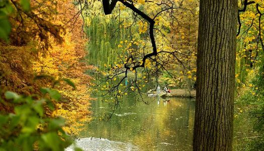 1fall_pond_Edit