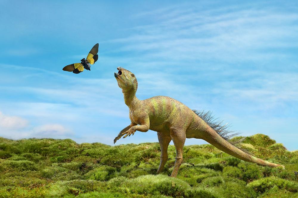 Fruitaden Dinosaur