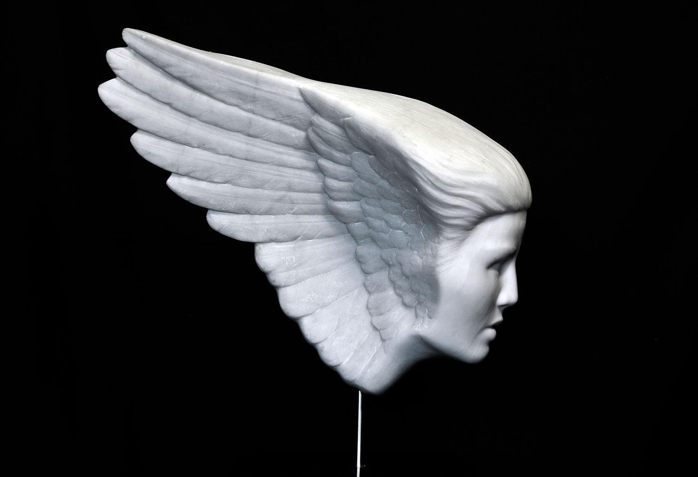 WingFace Wing side