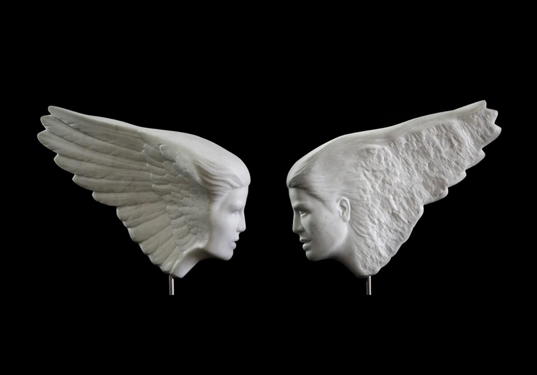 WingFace both sides