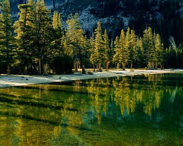 Early Morning, Lake Tenaya, Yosemite National Park, California