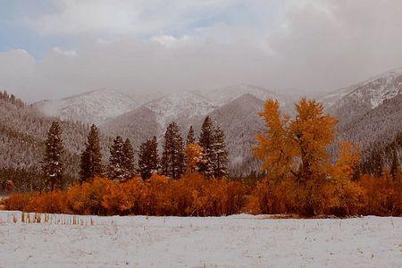 Genesee Valley, Fall Snow, Plumas County, Northern Sierra Nevada, California, copyright 2012 David Leland Hyde.
