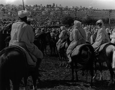 Riders Waiting To Ride In Fantasia, Settat, Morocco, North Africa