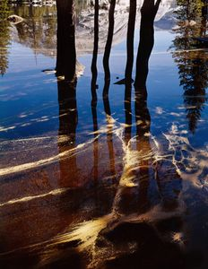 Pollen, Shadows, Lake Tenaya, Yosemite Natonal Park, California