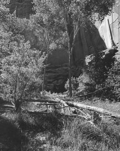 Pot Canyon, Tributary To The Escalante River, Glen Canyon, Utah, 1964