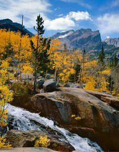 Hallet's Peak, Aspens, Rocky Mountain National Park, Fall, Colorado, copyright Philip Hyde.