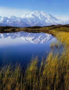 Mt. Denali, Reflection Pond, Denali National Park, Alaska