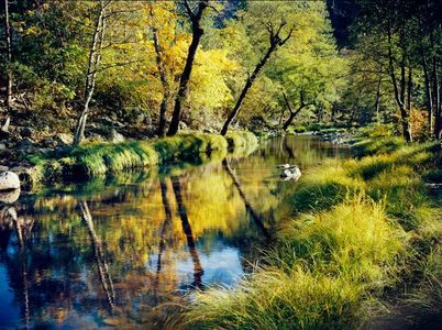 Indian Creek At Watson's, Northern Sierra, California, copyright 1960 by Philip Hyde.