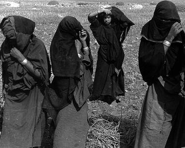 Women Harvesting Grain Near Tiznit, Morocco, North Africa