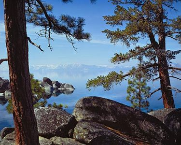 Lake Tahoe Through Trees, Sierra Nevada Mountain Range, Nevada - California