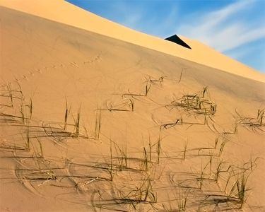 Kelso Dunes, Mojave Desert, now Mojave National Preserve, California