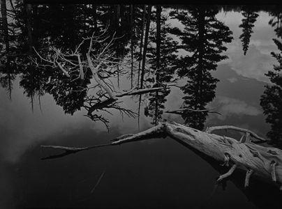 Snags & Reflections In Lake Near John Muir Trail At Island Pass, Ritter Range, The Minarets, Ansel Adams Wilderness, Sierra Nevada, California