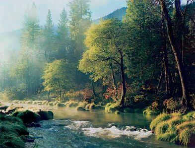 Misty Morning, Indian Creek, Northern Sierra Nevada, California