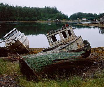 Elfin Cove, Southeast Alaska