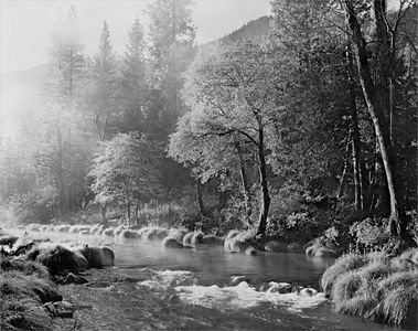 Misty Morning Indian Creek, Northern Sierra Nevada, California, 1983.