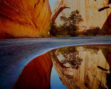 Reflection Pool, Arches, Escalante River, Escalante Wilderness, now Grand Staircase-Escalante National Monument, Utah