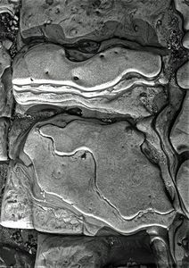 Rock Formations Detail, Weston Beach, Point Lobos State Reserve, California