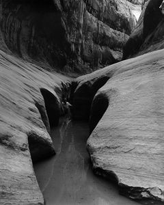 Fred Packard In Labyrinth Canyon, Glen Canyon, Utah.