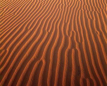 Ripples on Kelso Dunes, Mojave Desert, Southern California, 1987.