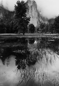 Cathedral Rocks, Yosemite Valley, Sierra Nevada, Yosemite National Park, California