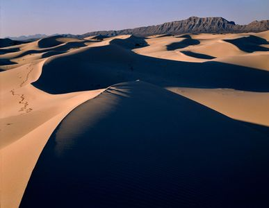 Los Medanos De Samalayuca, Sand Dunes, Chihuahua, Mexico
