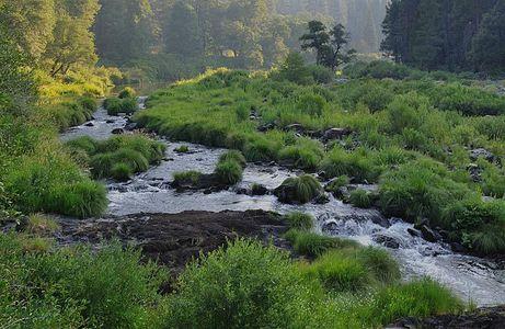 Indian Creek Near Greenville Wye, Feather River Canyon, Plumas County, Sierra, California, copyright 2009 David Leland Hyde.