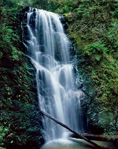 Berry Creek Falls, Big Basin Redwoods State Park, Santa Cruz Mountains, Coastal Range, California