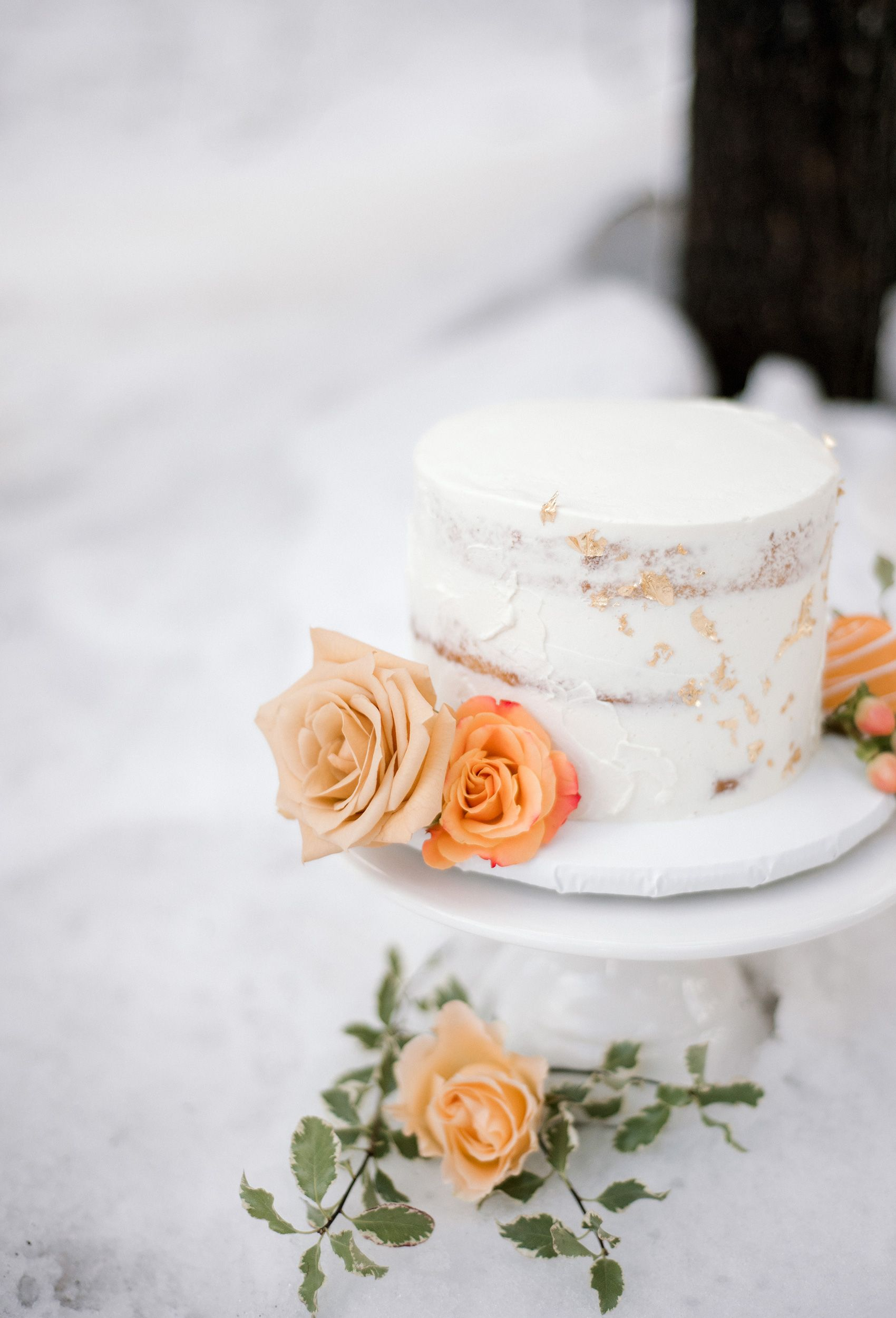 Wedding-cake-oregon-elopement