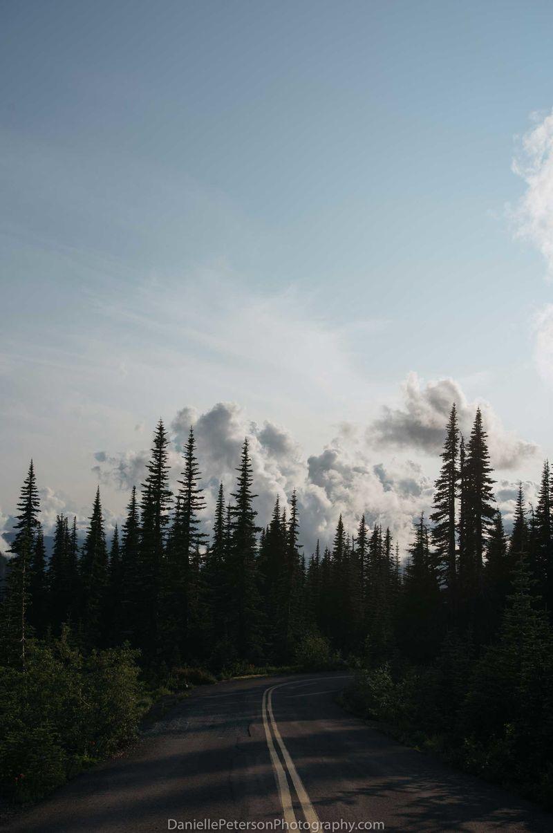 Rainier-3.jpg