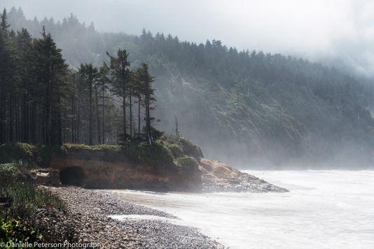 OregonCoast-12126.jpg