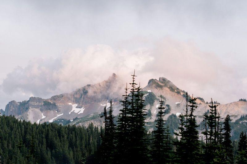 Mt. Rainier State Park