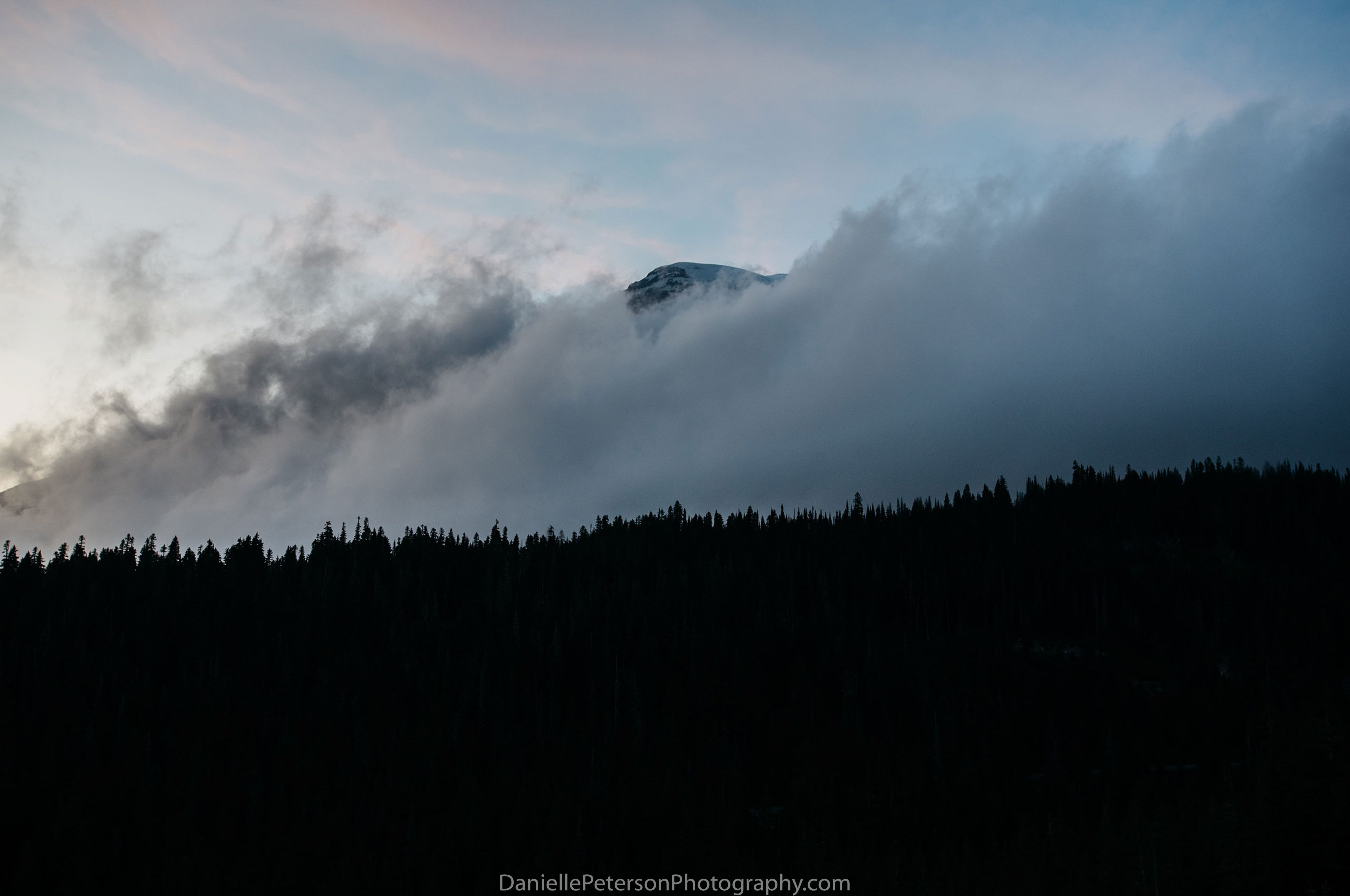 Rainier-66580.jpg