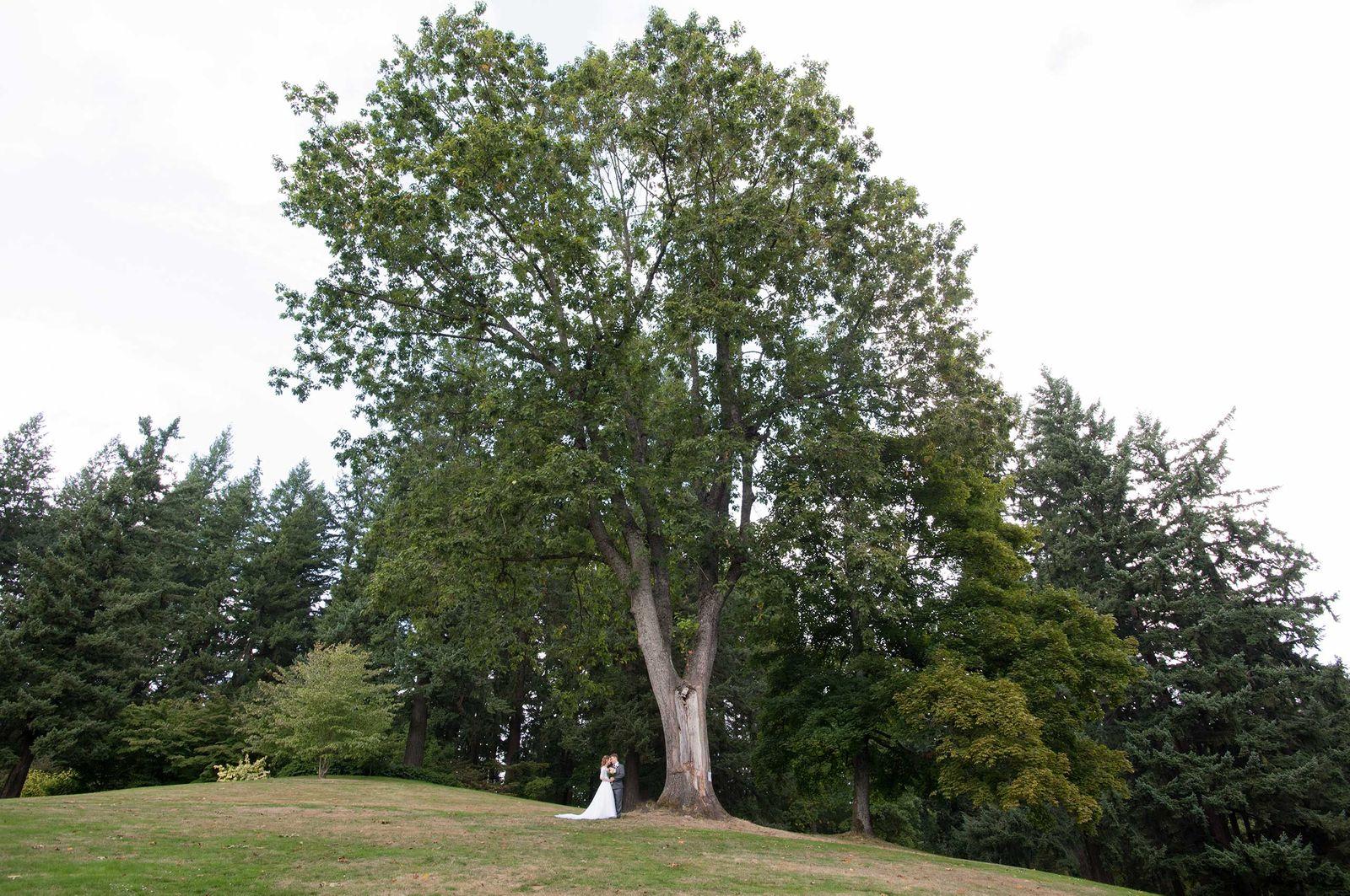 Wedding15536-1-2.jpg