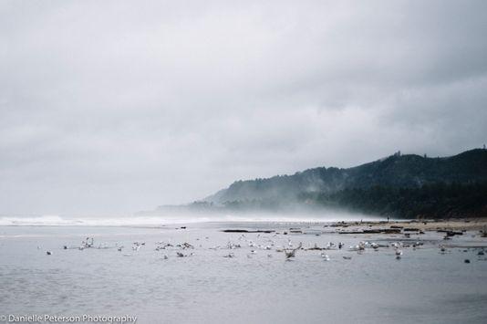 OregonCoast-.jpg