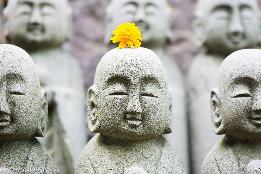 20150622_japan_3_0454.jpg