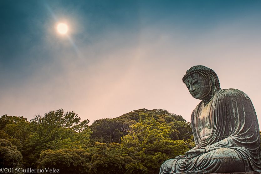 20150622_japan_3_0400-edit-edit.jpg