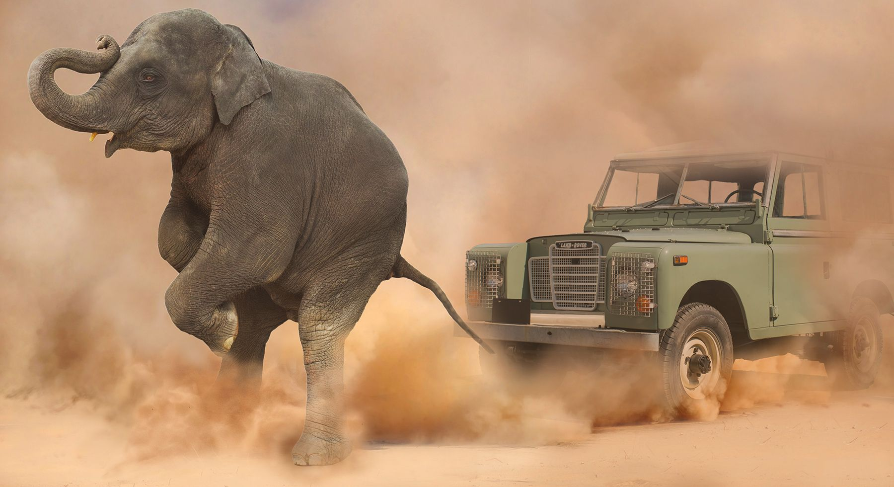 1elephant____old_rover__.jpg