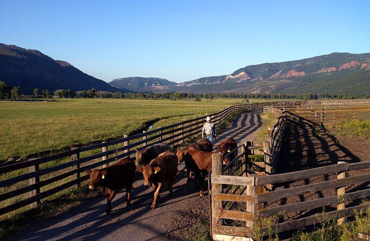James Ranch / Durango, CO