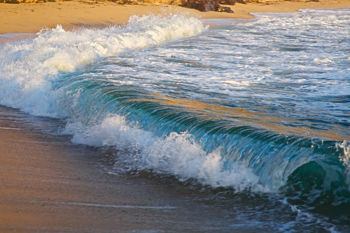 1in_the_waves1_826