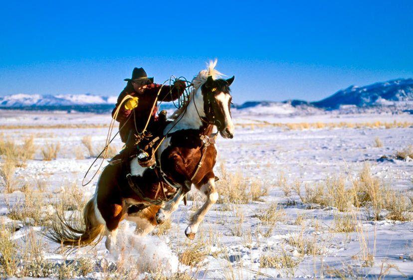 ES35-2322_Londie_G_PadelskyCiwboy taking off, winter in the Eastern Sierra, California