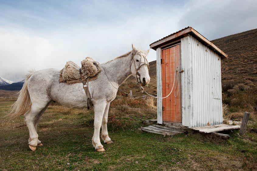 SAMER_07057_Londie_G_PadelskyOuthouse at Patagonia Chile