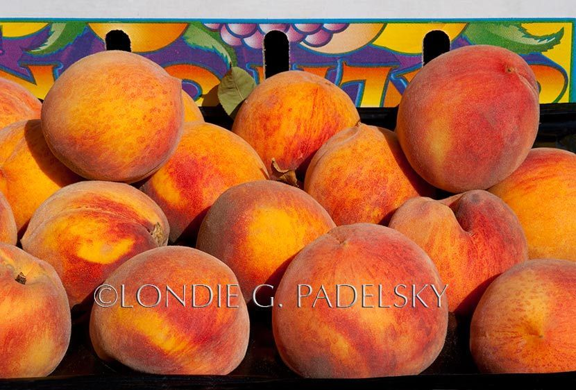 FVLGP_0627_Londie_G_PadelskyCrate of Peaches, Central Coast, California