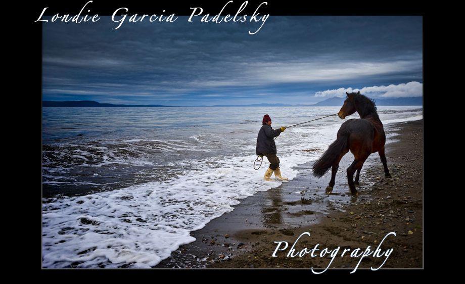 Fisherman ropes a wild horse_LondieGPadelsky.jpg