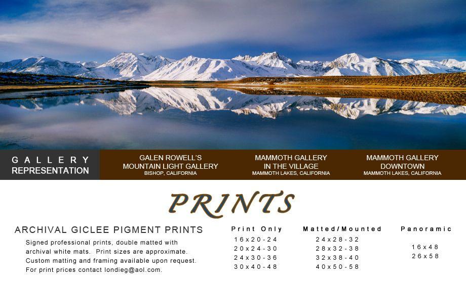 1WebSitePrintPage1.jpg