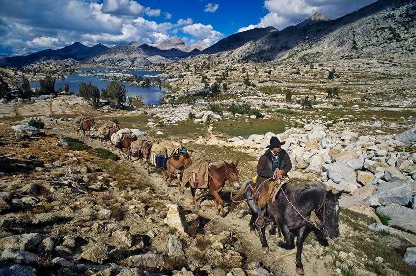 JMT-7734_Londie_G_PadelskyCowboy packer in the high Sierra, California