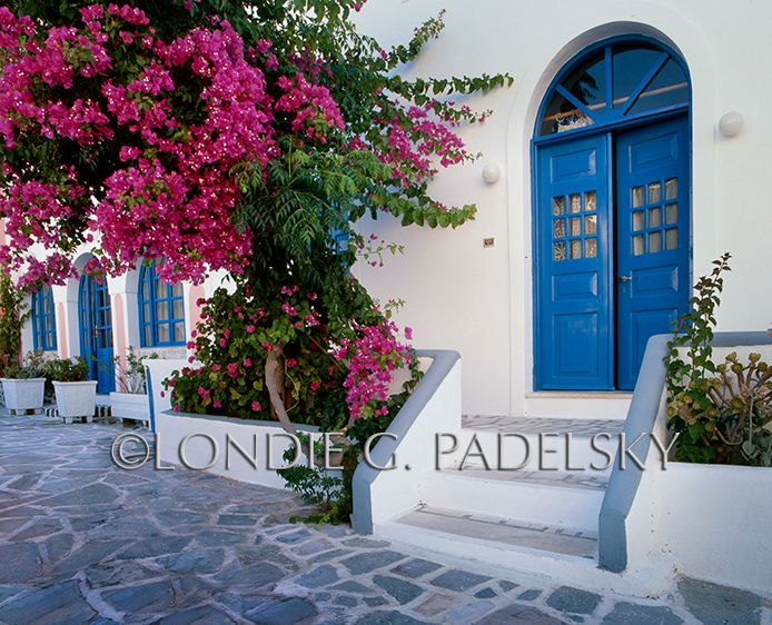 GR_137_Londie_G_PadelskyDoors and Bouganvillas, Santorini Island, Greece