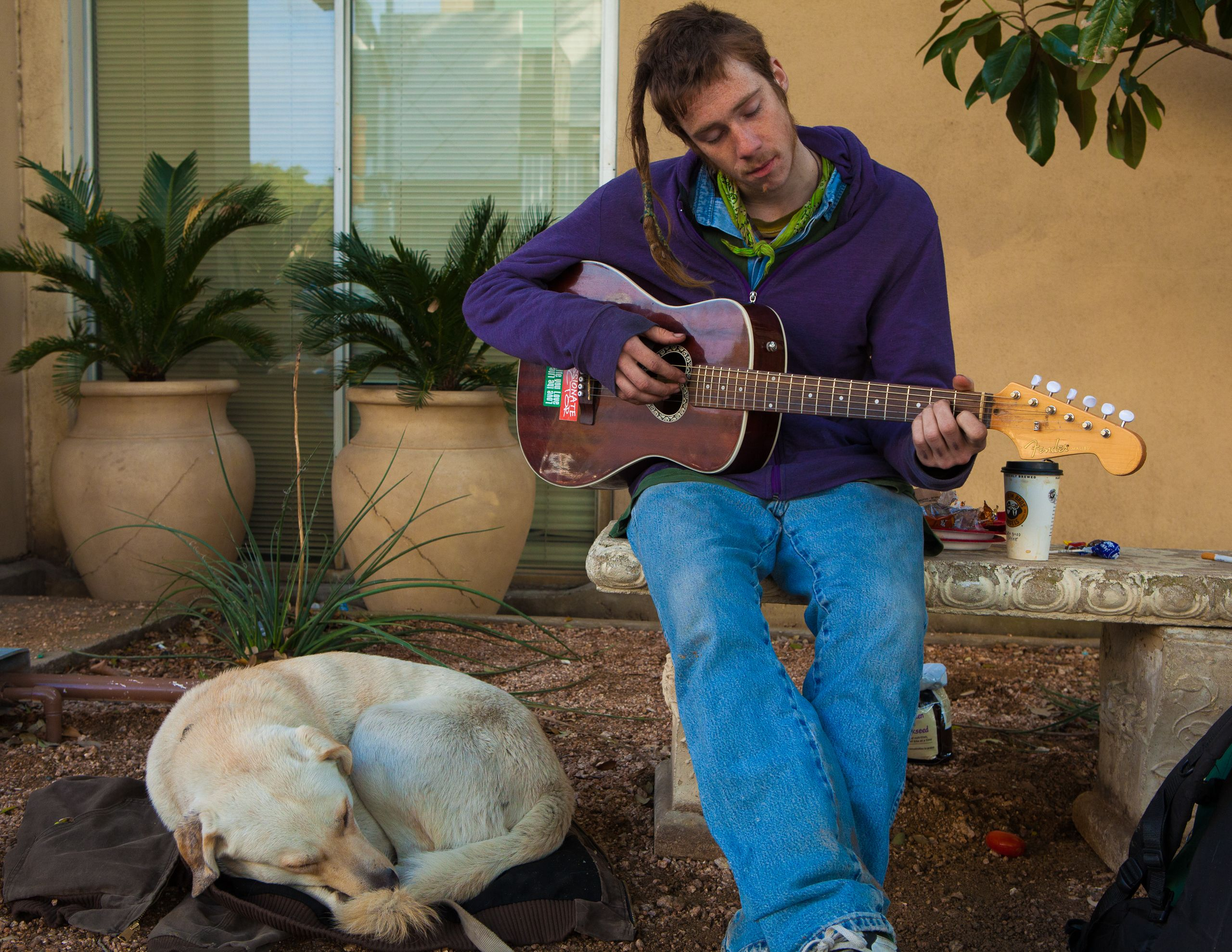 Guitar Player and Dog